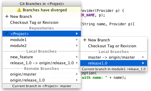 Git Branches for Multi-root Projects | IntelliJ IDEA Blog