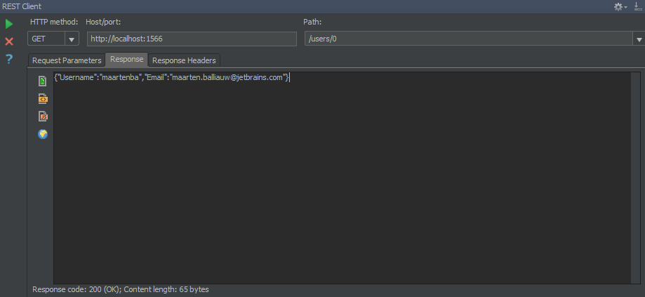 Using the REST Client within PhpStorm and WebStorm