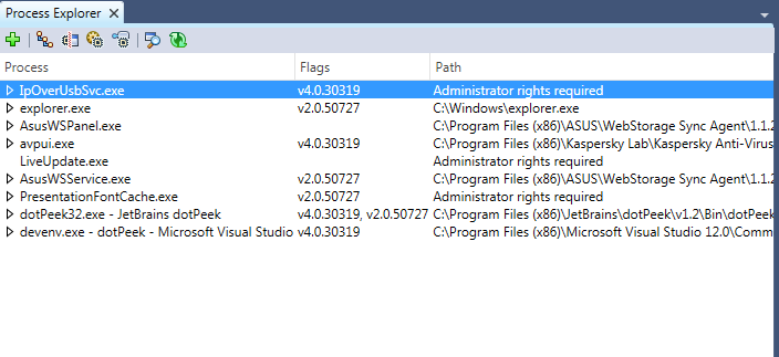 Process Explorer window in dotPeek 1.2
