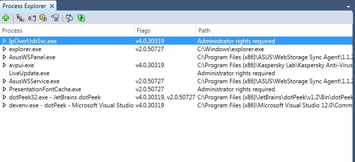 Process Explorer window in dotPeek 1.2
