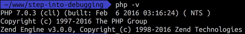 php -v result
