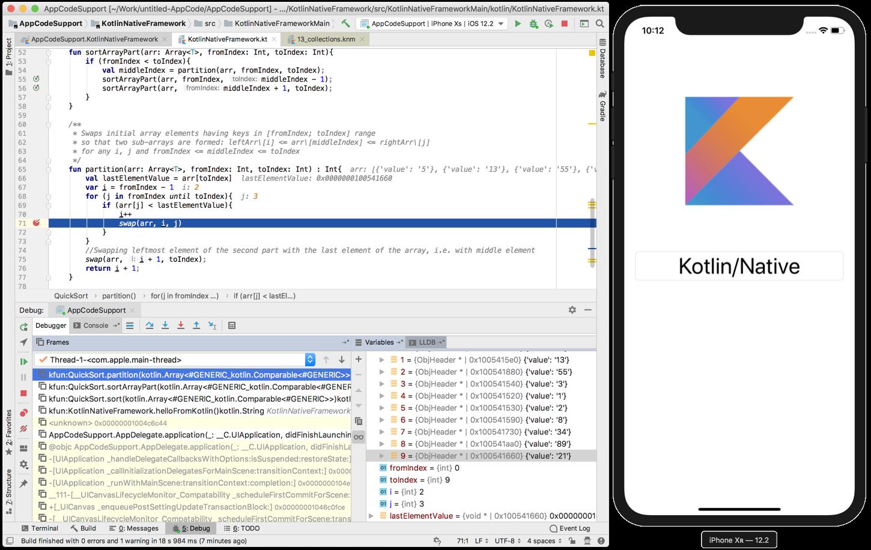 appcode2019.1-debugger