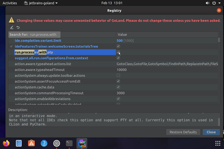GoLand on RaspberryPi - Edit Configuration