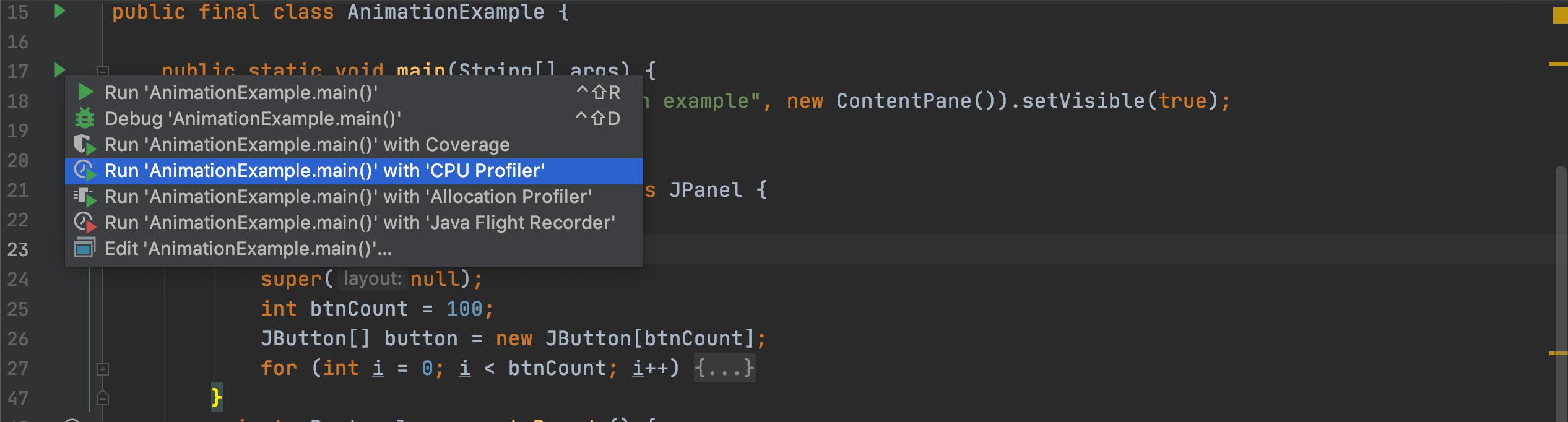 ij-profiler-run-options