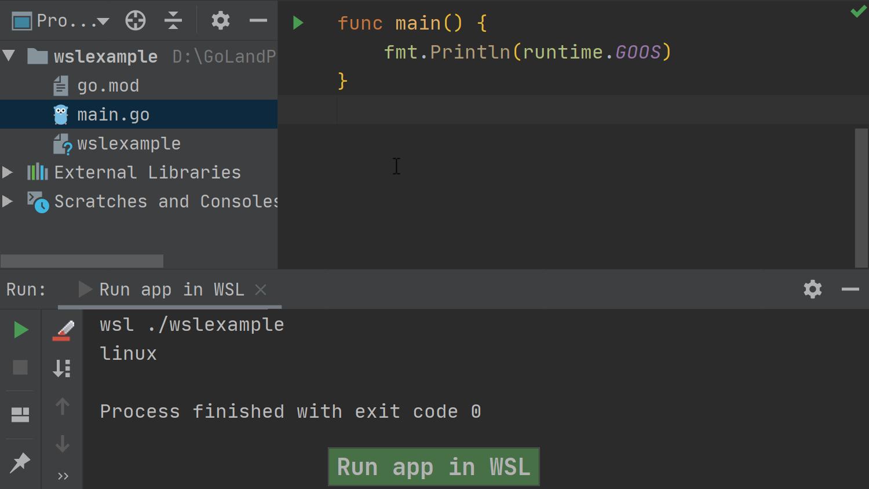 build and run go app