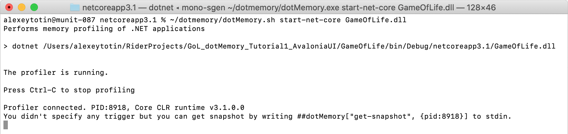 Running dotMemory on macOS