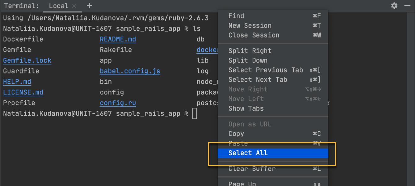 Select terminal output