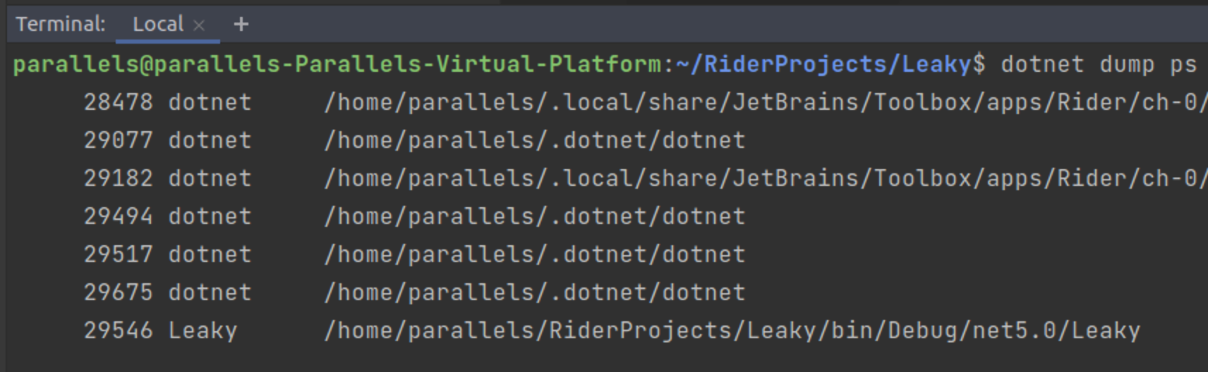 The results of the dotnet dump ps command in Rider's terminal window.