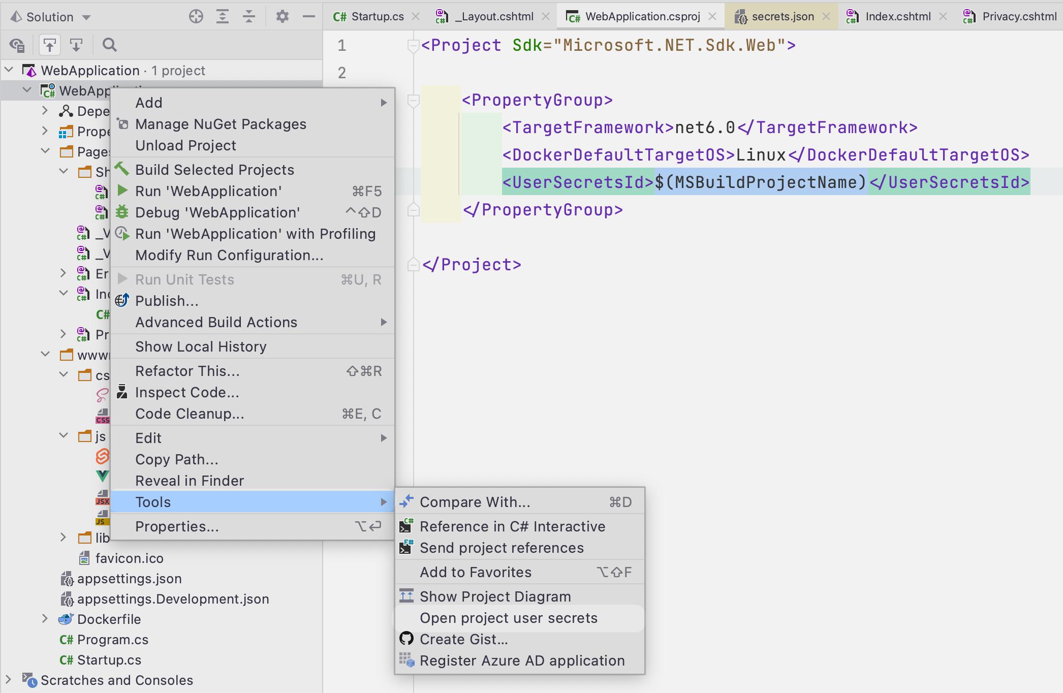 Accessing dotnet core secrets from context menu inside Rider.