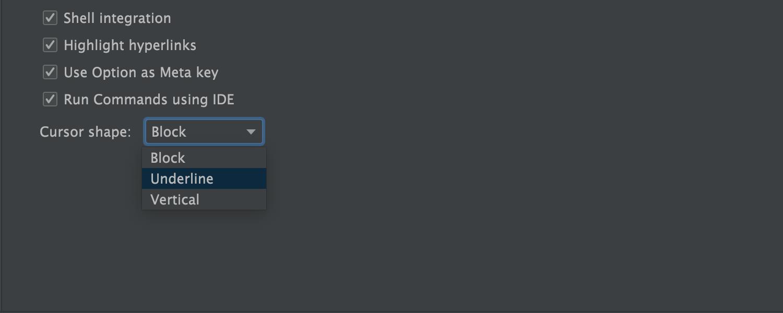 Terminal Cursor Options