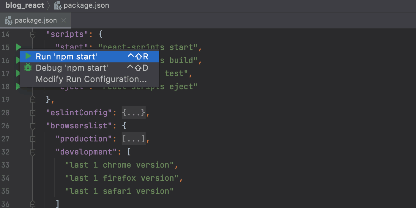 Run a React app in the development mode from package.json.