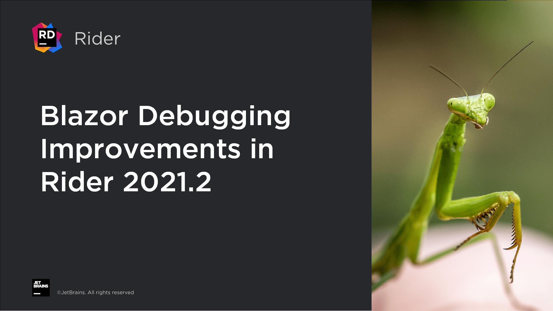 Blazor Debugging Improvements in Rider 2021.2